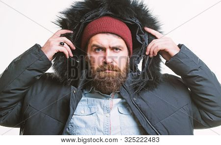 Prepared For Weather Changes. Winter Stylish Menswear. Man Bearded Stand Warm Jacket Parka Isolated
