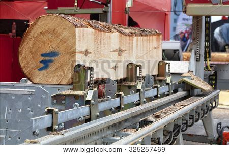 Woodworking, Lumber, A Large Pine Log Is Fixed On The Flyover Of A Modern Automatic Sawmill.