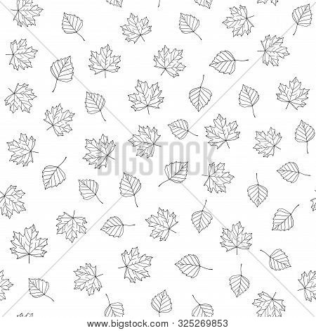 Autumn Leaves. Vector Monochrome Seamless Pattern With Hand Drawn Outline Leaves. Sketch Maple And B