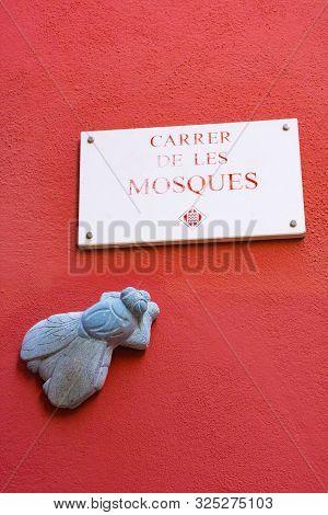 Girona, Spain - January 23, 2019: Stone Fly. Street Of Flies In Catalonia, Spain. Flies - One Of Sym
