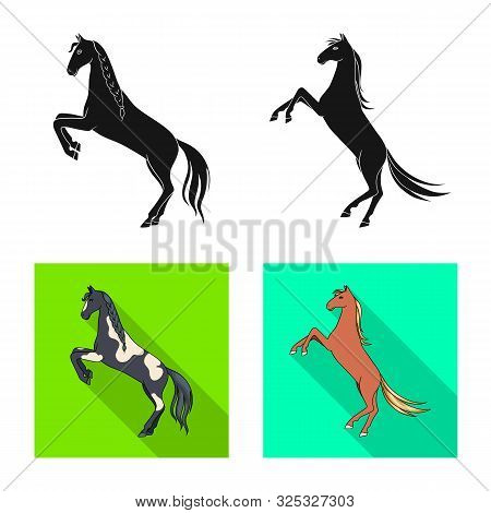 Vector Illustration Of Breed And Equestrian Logo. Set Of Breed And Mare Stock Vector Illustration.