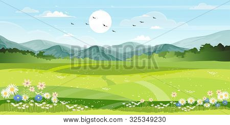 Panorama View Of Spring Village With Green Meadow On Hills With Blue Sky, Vector Cartoon Spring Or S