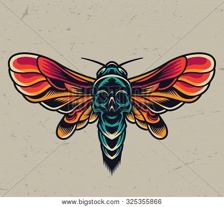 Vintage Colorful Flying Death Head Moth With Skull Silhouette On Abdomen Isolated Vector Illustratio