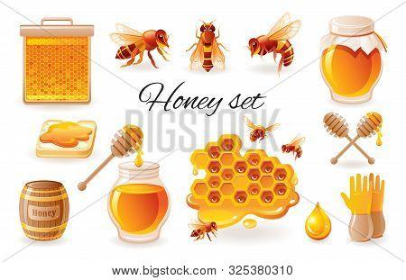 Honey Beekeep Icon Set With Honeycomb, Honeybee - Bee Insects, Honey Jar, Drop, Syrup Toast. Realist