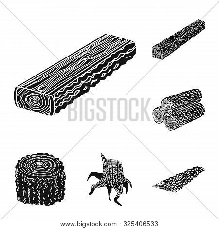 Vector Design Of Hardwood And Construction Symbol. Collection Of Hardwood And Wood Vector Icon For S
