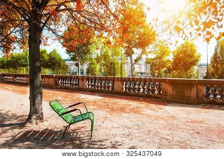 Green Bench Under The Tree In Tuileries Garden In Paris, France. Autumn Landscape