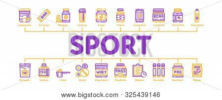 Sport Nutrition Cells Minimal Infographic Web Banner Vector. Sport Nutrition For Sportsmen Linear Pi