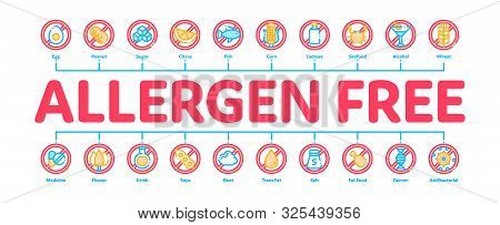 Allergen Free Products Minimal Infographic Web Banner Vector. Allergen Free Food, Drink Linear Picto