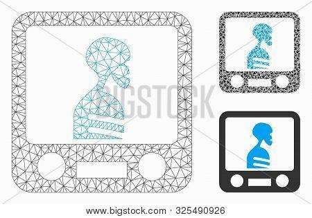 Mesh Xray Screening Model With Triangle Mosaic Icon. Wire Carcass Triangular Mesh Of Xray Screening.