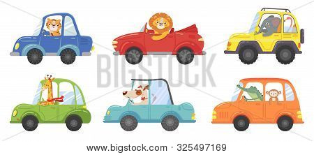 Cute Animals In Funny Cars. Animal Driver, Pets Vehicle And Happy Lion In Car Kid. Transportation An