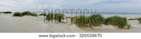 Panorama Of The Grassy Dunes On The Island Of Terschelling
