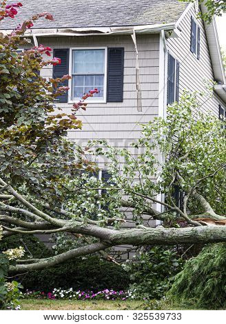 A Tree Hits The Roof Of A House And Falls Off Of It To The Ground During A Summer Storm.