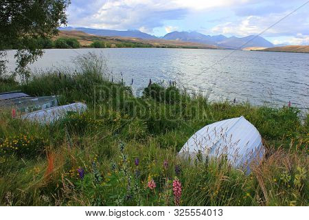 Bank of lake alexandrina in canterbury, new zealand