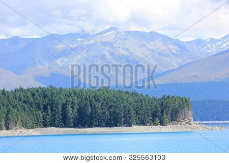 wooded peninsula in the lake  pukaki in canterbury