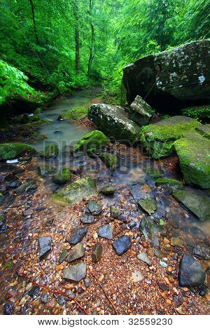 ruhige Creek Szene in alabama