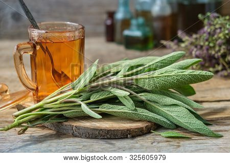 Fresh Sage, Cup Of Healthy Salvia Tea, Medicinal Herbs And Glass Bottles Of Essential Oil And Tinctu