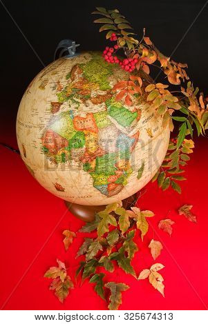 Terrestrial Globe And Autumn Leaves On A Studio Background