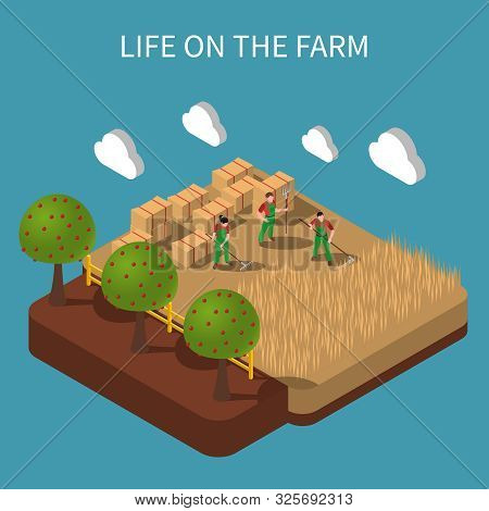Life On Farm Isometric Composition With Agricultural Workers Engaged In Haymaking On Rustic Landscap