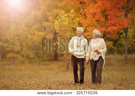 Portrait Of Happy Senior Woman And Man