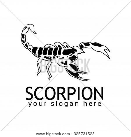 Scorpion Logo Stock Logo Template, Flat Design. Black Scorpion Logo