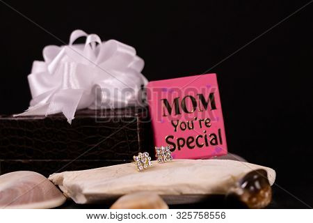 Beautiful Diamond Earrings On Stone With Mom You're Special Mini Message Book And Decorated  Brown L