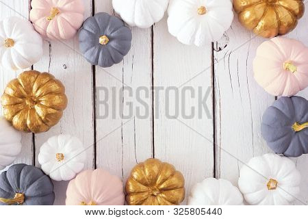 Autumn Frame Of Dusty Rose, White, Gold And Gray Pumpkins On A White Wood Background. Modern Muted P