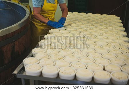 Cheesemaker forming product on a factory