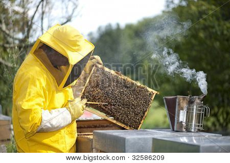 Beekeeper With Honeycomb poster