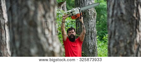Lumberjack With Chainsaw In His Hands. The Lumberjack Working In A Forest. Deforestation. The Lumber