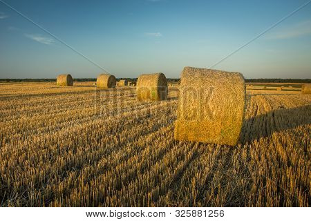 After Haymaking, Bales Of Hay On The Stubble, Horizon And Sky