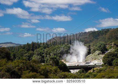 Geysir In Te Puia Park In Rotorua, North Island