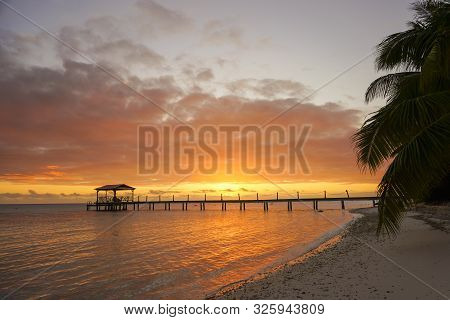View Of A Dock Leading Out Into Water Framed By Palm Trees On The Tropical Island Of Fakarava In Fre