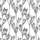 Botanical sketch of wilted flowers herbarium. Drawing by ballpoint pen. Seamless pattern. poster