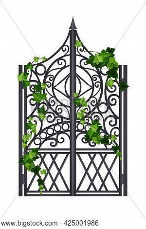 Iron Wrought Vector Gate, Metal Old Mansion Door, Green Ivy Leaf, Creeper Plant Isolated On White. G