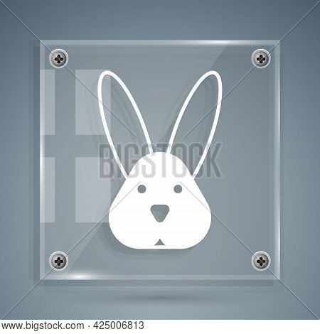 White Animal Cruelty Free With Rabbit Icon Isolated White Background. Square Glass Panels. Vector
