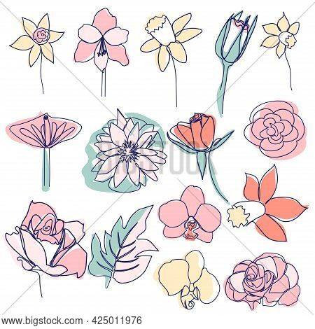 Continuous Line Drawing Of Beautiful Flowers. Minimalism, Beauty