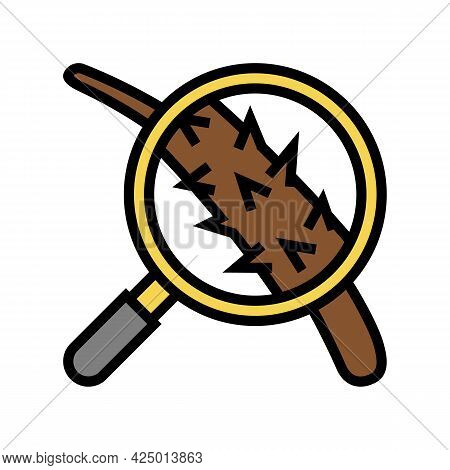 Damage Hair Researching Color Icon Vector. Damage Hair Researching Sign. Isolated Symbol Illustratio