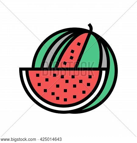 Watermelon Summer Berry Color Icon Vector. Watermelon Summer Berry Sign. Isolated Symbol Illustratio