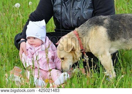 Mother And Her Infant Girl With Domestic Pet Dog In Love