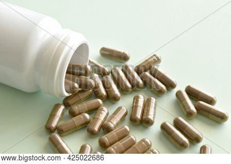 Herb Supplement Capsules Spilling Out Of A Plastic Bottle.  Lingzhi Mushroom Or Reishi Mushroom Supp