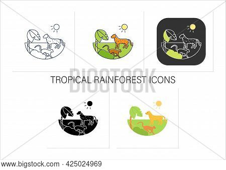 Tropical Rainforest Icons Set.humid And Warm Place.located Near The Equator.living Place For Dangero