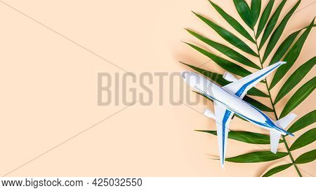 Airplane And Palm Leaf On Neutral Beige Background With Copy Space For Text. White And Blue Plane. S