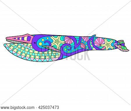Blue Whale - Vector Linear Full Color Zentangle Illustration - With Marine Mammal Living In The Ocea