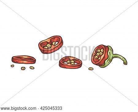 Pod Of Red Chili Peppers Cut In Rings, Engraving Vector Illustration Isolated.