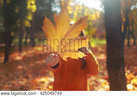 Little Girl Holding Yellow Autumn Leaf In Front Of Her Face In Autumn Park.