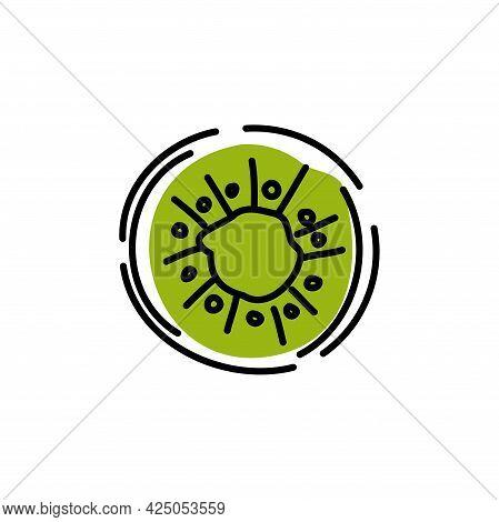 Kiwi Fruit Slice On White Background. Icon. Vector Illustration.