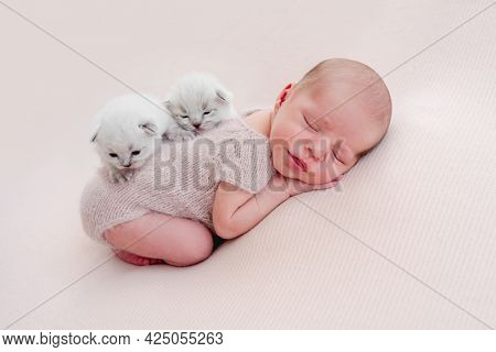 Adorable newborn baby boy sleeping on his tummy and two little fluffy kittens sitting on his back. Cute infant kid napping with small cats during studio photoshoot