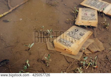 Irretrievably Lost Time Concept. Pages Of An Old Tear-off Calendar Floating In A Muddy Puddle. Inscr