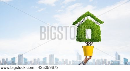Green Plant In Shape Of House Grows In Yellow Pot. Human Hand Holding Pot With Plant On Cityscape Ba