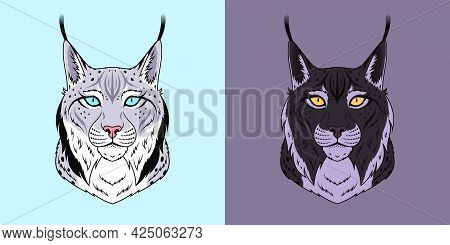 White And Black Lynx Head With Blue And Golden Eyes, Isolated Lynx Face. Predatory Bobcat. Lynx Silh